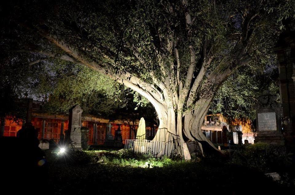 El árbol del vampiro Leyenda del panteón de Belén (Guadalajara)