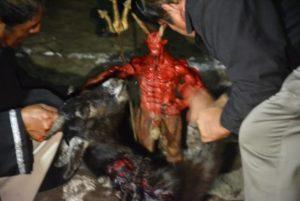 El Aquelarre de brujos en Catemaco, Veracruz