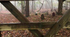 Cementerio De Mascotas Real