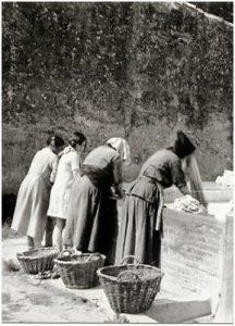 La lavandera de Tequila