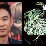 Archive 81 James Wan Serie Netflix